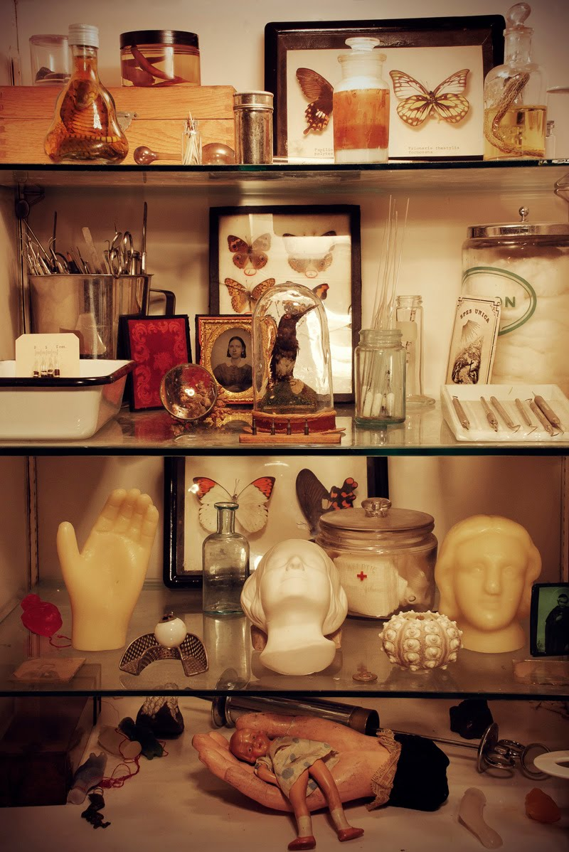 SUPPORT THIS PROJECT: Morbid Anatomy Library Fire. – The 22 Magazine