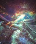 Kerns-Disco-2012