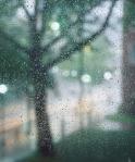 Kerns-Rain-2012