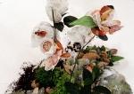 Bygones (New work by Mira Alibek.)