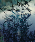 Untitled (Lake 5), 2010 Pigment print on paper